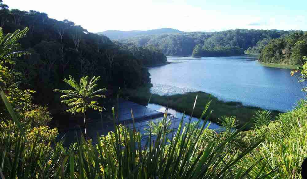 Rocky Creek Dam - Pet Friendly Byron Bay Accommodation & Surrounds blog
